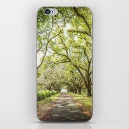 A Walk Through Time iPhone Skin