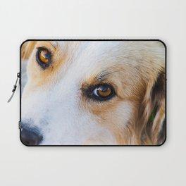 Portrait of a lovely stray dog Laptop Sleeve