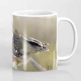 Northern Saw Whet Owl Coffee Mug
