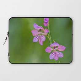 Beauty in nature, wildflower Gladiolus illyricus Laptop Sleeve