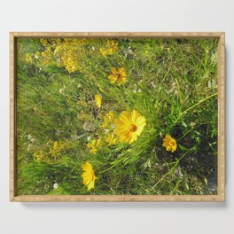 Coreopsis Serving Tray