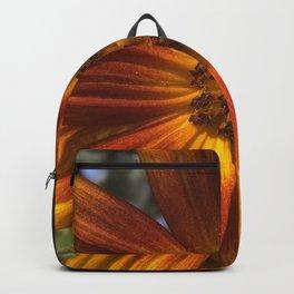 Sunburst Sunflower Backpack