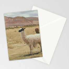 Lama Pampa bolivie Stationery Cards