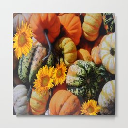 DECORATIVE  FALL SQUASH SUNFLOWER HARVEST Metal Print
