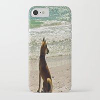shiba inu iPhone & iPod Cases featuring Shiba Inu by Blue Lightning Creative