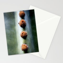 The dots of a cactus | Lanzarote Cactus Garden | Botanical fine art nature photography | Stationery Cards