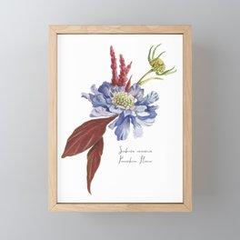 Blue Scabiosa Flower Framed Mini Art Print