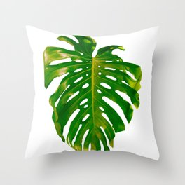 Guatemala - Monstera Deliciosa Leaf Throw Pillow