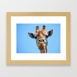 The Giraffe - Africa wildlife Framed Art Print