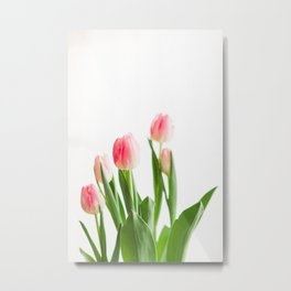 Dose of Spring by Tulips Metal Print