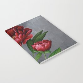 Red Peony Flower Painting Notebook