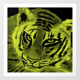 Tiger with Lime Background Art Print