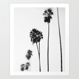 Palm Trees, Blurry Art Print