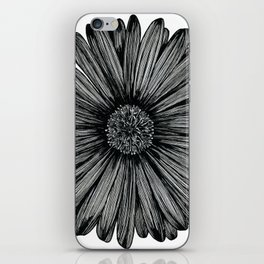Aster Flower iPhone Skin
