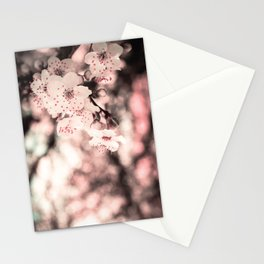 Sweet Spring (White Cherry Blossom) Stationery Cards
