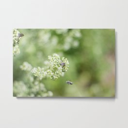 bee friends Metal Print
