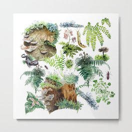 Fungi & Ferns White Metal Print