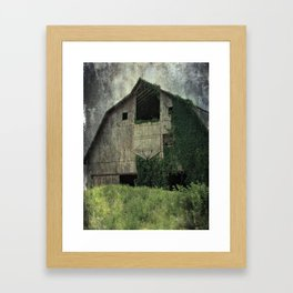 Kalona Barn and Ivy Framed Art Print