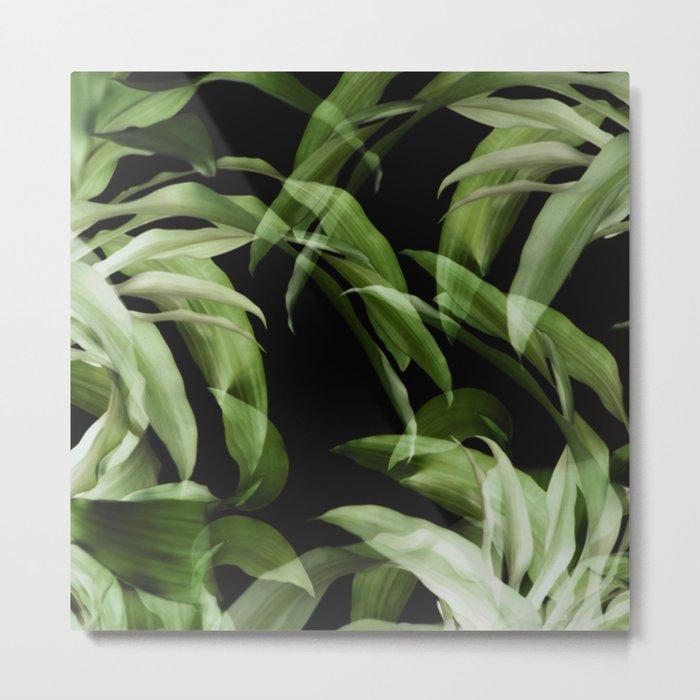 Tropical leaves. Pattern. Metal Print