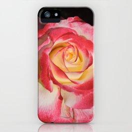 Multi-Hued Rose iPhone Case