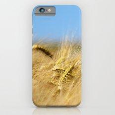 Blue & Gold iPhone 6s Slim Case