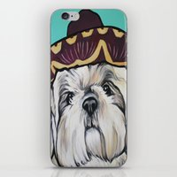 shih tzu iPhone & iPod Skins featuring Mimosa the Shih Tzu by Cheney Beshara