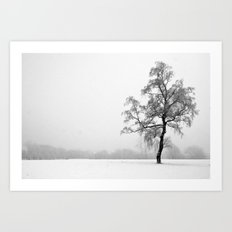 Solitary Tree in Winter Art Print