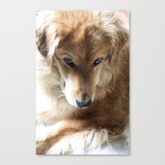Foster Canvas Print