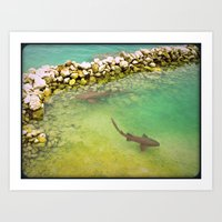 sharks Art Prints featuring Sharks by FortuneArt&Photography