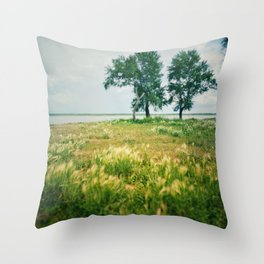 Summer on a village 4 Throw Pillow