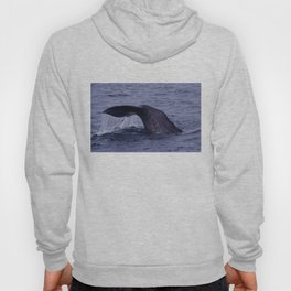 Sperm Whale Diving Hoody