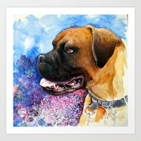 boxer Art Prints featuring Boxer by oxana zaika