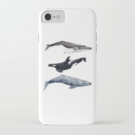 Orca, humpback and grey whales iPhone Case