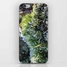 Frosted moss iPhone Skin