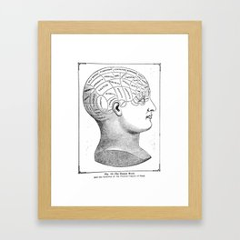 Phrenology2 Framed Art Print