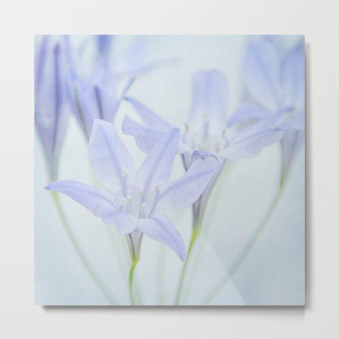 triplet lily Metal Print