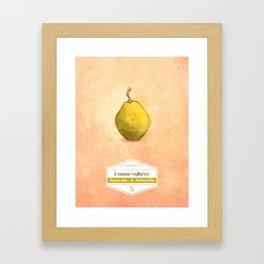 Ambarella Framed Art Print