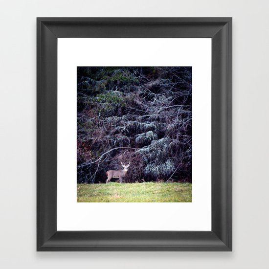9 Point Buck Framed Art Print