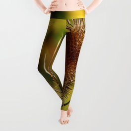 Thistle in Autum Leggings