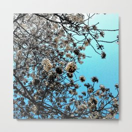 Hana Collection - Hanami Time Metal Print