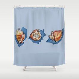 Three Seashells in Blue Shower Curtain