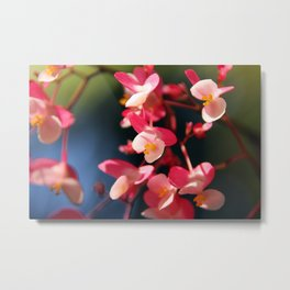 Flower Bokeh Metal Print