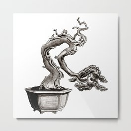 """""""Tree-man"""" Bonsai Metal Print"""