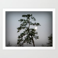 Morning Moon Shine Art Print
