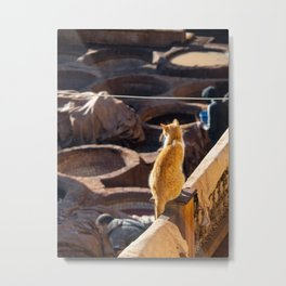 Cat watching over the tanneries in Fez | Morocco travel photography Metal Print