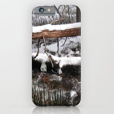 Winter's Light iPhone 6s Slim Case