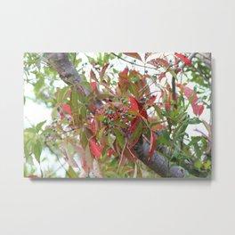 Wild Island Flowers Metal Print