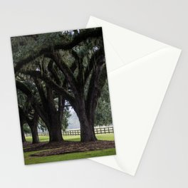 Tree Arch Drive Stationery Cards