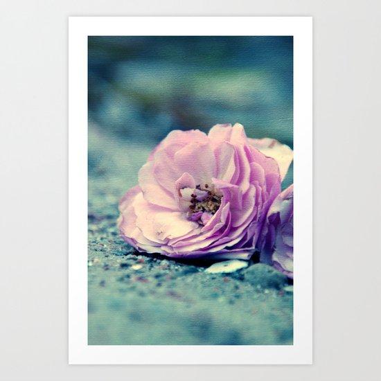 rose on beach Art Print