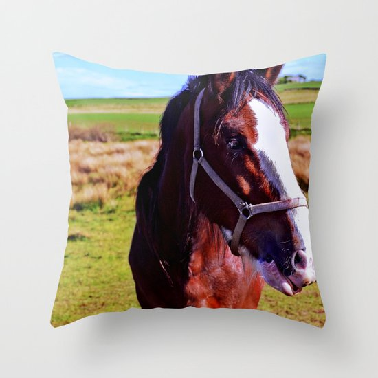 Scottish Clydesdale Throw Pillow